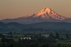Sunrise hitting Mt. Hood near Hood River, Oregon as seen from Panorama Point County Park. The photo features layers of orchards and farms, along with warm early morning light lighting up the top of the mountain.