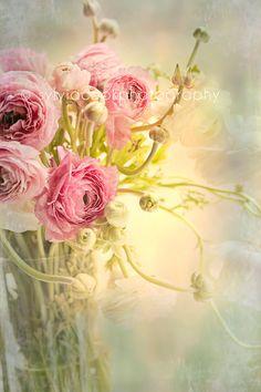 shabby chic home decor Ranunculus-fine art print-romantic-pink and green still life. $30.00, via Etsy.