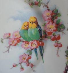 Vintage parakeet and flowers design dish. Parakeets, Parrots, Vintage Birds, Vintage Prints, Decoupage, Printable Pictures, Granny Chic, China Painting, Vintage Dishes