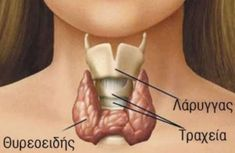 Life After Thyroidectomy Regain the Power of Your Voice! by Life After Thy. Life After Thyroidectomy Regain the Power of Your Voice! by Life After Thyroidectomy Health Guru, Health Class, Health Trends, Health Fitness, Health Tips, Women's Health, Apple Health, Fitness Life, Thyroid Diet