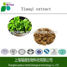 Check out this product on Alibaba.com App:GMP top quality Tian Qi powder https://m.alibaba.com/6vY7je
