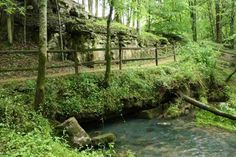 Buzzard Roost Spring was a water source for the Colbert house which also served as an inn and stand for travelers on the Old Natchez Trace. Tennessee River, Gatlinburg Tennessee, Tuscumbia Alabama, Natchez Trace, Spring Images, World Photo, Nature Scenes, Summer Travel, Travel Usa