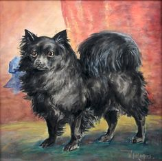 Click to see full size: Pomeranian by Franklin Whiting Rogers (American, 1854-1917)- Pomeranian by Franklin Whiting Rogers (American, 1854-1917)