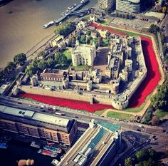Tower from above with poppies