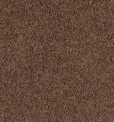 Delight Mountain Mist Texture Petprotect 174 Carpet