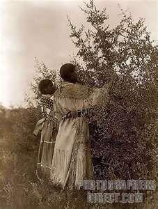 Lakota Native American women gathering Buffalo Berries