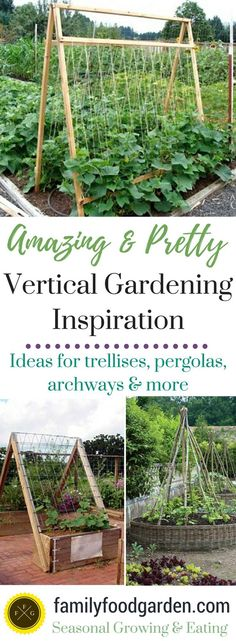 Don't you just love the sight of flowers and food growing upwards? After sharing with you  '5 Gorgeous Vertical Gardening Beds' last year I wanted to offer you some more vertical gardening inspiration. Why is vertical gardening so great? For one it adds beauty and architecture to your garden. By