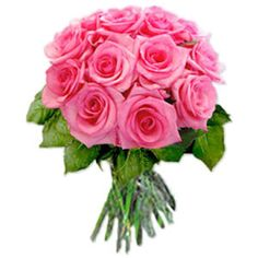 Bunch of 12 Pink Roses - Lovely Bouquet