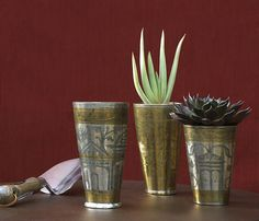 Brass Indian Lassi Cups used as planters. Newsletters - Flora Grubb Gardens