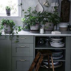 43 Ideas For Kitchen Paint Grey Walls Gray Kitchen Paint, New Kitchen, Kitchen Dining, Kitchen Shelves, Kitchen Ideas, Black Kitchens, Home Kitchens, Home Interior, Kitchen Interior