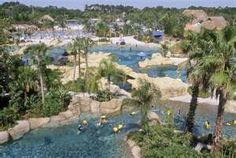 Discovery Cove in Orlando, FL.  You can swim with stingrays, dolphins, and other sea life.