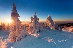 Frozen dreams III by Vincent BOURRUT on 500px