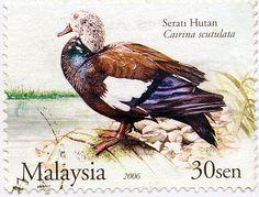 Malaysia, 2003. Serati Hutan Stamp