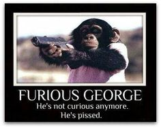 hILARIOUS Ah, I'm crying. This is the best thing I've seen all day. Furious George.