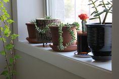 How To Paint Windowsills & Window Trim — Apartment Therapy Tutorials