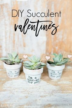 DIY Succulent Valent