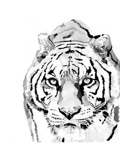 Style Number W12 Tiger