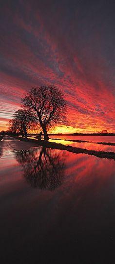 Flooded Sunrise, Somerset, England