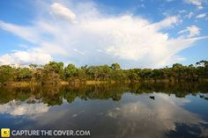 Blackburn Lake #CaptureTheCover entry - by Shirley in Melbourne's Eastern Region. Click to enter your photos!
