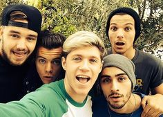 One Direction are a band of rich young men, that much is indisputable. In 2013 reports suggested that Harry Styles, Liam Payne, Louis Tomlinson, Niall Horan and Zayn Malik were worth around mil… One Direction 2014, One Direction Selfie, Grupo One Direction, One Direction Group, Members Of One Direction, One Direction Pictures, One Direction Fandom, Liam Payne, Louis Tomlinson