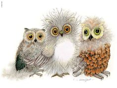 Owls. Nice artwork.