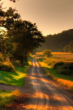 A winding sun-dappled road at dusk (no location given) by Brian L.