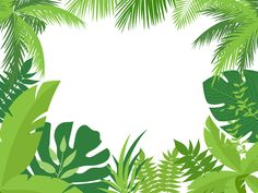 Palm Trees and Leaves