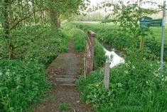 Wandeling van de maand: Mariënwaerdt Walking Routes, She Likes, Hiking Trails, Netherlands, Greenery, Holland, Things To Do, Sidewalk, Country Roads