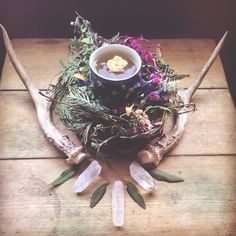 nature collection . herbs crystals