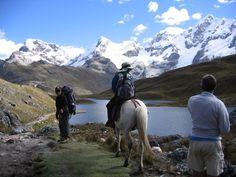 Horse back riding in the Cordilleras Peru Treks, Horseback Riding, South America, Mount Everest, Horses, Mountains, Places, Nature, Travel