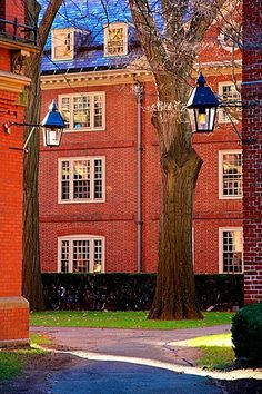 Historic red brick dormitory buildings on the campus of Harvard University in Cambridge, MA Boston Strong, In Boston, Great Places, Beautiful Places, Beautiful Pictures, Harvard Yard, Harvard Campus, Cambridge Boston, Landscape Lighting