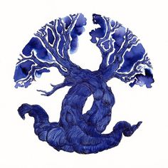 #Ink Test Tree: Diamine 150th Anniversary ~ Regency Blue on @StillmanandBirn Zeta paper
