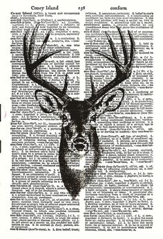I want to print cute things for frames in kitchen/living room. Maybe a stag related thing above the fireplace?