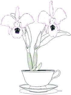 orchid coloring sheet
