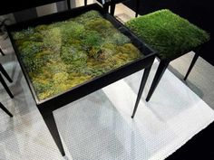 Moss Coffee Table.