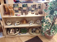 Small world continuous provision. Lots of open ended natural resources for the children to explore and use as they choose.