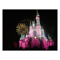 Wishes Fireworks Picture of Walt Disney World, Florida ❤ liked on Polyvore featuring backgrounds e disney