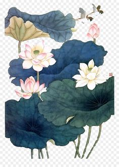 Learn To Draw A Realistic Rose - Drawing On Demand Watercolor Lotus, Lotus Painting, Japan Painting, Korean Painting, Chinese Painting, Chinese Art, Lotus Flower Art, Lotus Art, Leaf Drawing