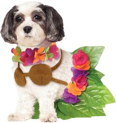 Rubies Costume Company Hula Girl Pet Costume -- Visit the image link more details. (This is an affiliate link and I receive a commission for the sales) #MyPet