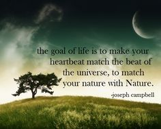 The goal of life is to make your heartbeat match the beat of the universe, to match your nature with Nature.  ~Joseph Campbell