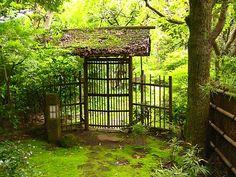 moss and bamboo, Kamakura