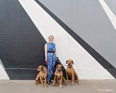 A dog portrait shoot in Maboneng Precinct, Johannesburg. Featuring three Rhodesian Ridgebacks, some cool graffiti and their stylish dog mom. Dog Portraits, Family Portraits, Dog Photography, Street Photography, Rhodesian Ridgeback, Fun Shots, Four Legged, Dog Mom, Your Dog
