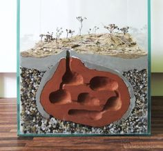 How to build a formicarium out of clay - posted in General Ant Keeping: How to…