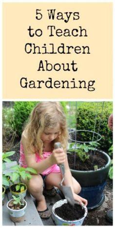 Ways To Teach Children About Gardening