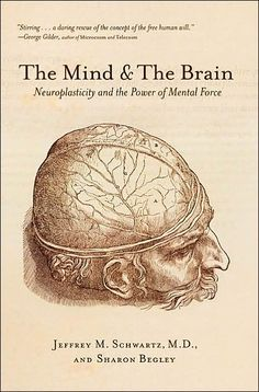 This is such a cool book if you have a friend or relative with a stroke this is a must read. wonderful insight into the brain and quantum physics      The Mind and the Brain: Neuroplasticity and the Power of Mental Force  By Jeffrey M. Schwartz, Sharon Begley