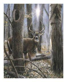 Woodland Sentry, Wildlife deer art by Kevin Daniel. Wildlife Paintings, Wildlife Art, Animal Paintings, Deer Paintings, Deer Art, Photo On Wood, Oeuvre D'art, Find Art, Illustration