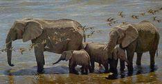 Robert bateman Elephant Herd and Sandgrouse