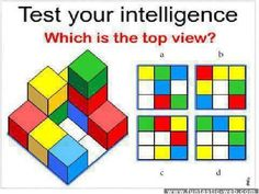 Test your intelligence: Which is the top view?