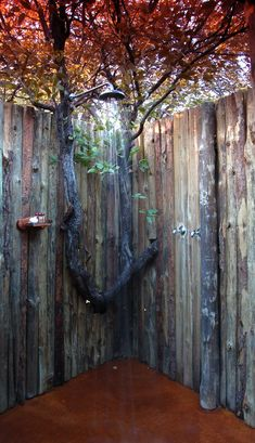 Outdoor shower  -  wooden pole walls