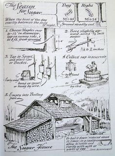 "violetcabin: ""Eric Sloane - Sugar house - the making of maple syrup. From ""The Seasons of America Past"" by Eric Sloane, "" Homestead Survival, Survival Life, Camping Survival, Outdoor Survival, Survival Prepping, Survival Skills, Camping Diy, Camping Packing, Camping Style"